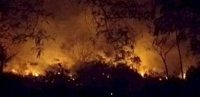 Bomberos evitaron que un gran incendio alcanzara viviendas