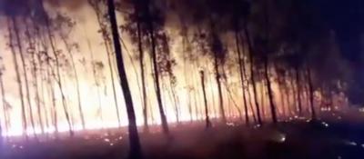 HOY / Varios incendios forestales y de pastizales en la madrugada