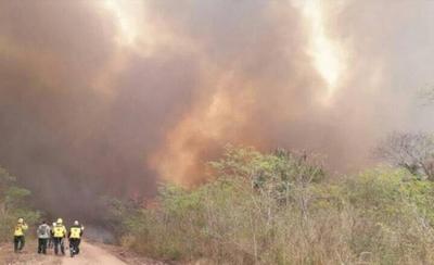 HOY / Hay 300.000 hectáreas incendiadas, 12 aviones combaten fuego, 1.579 tumbados por el humo