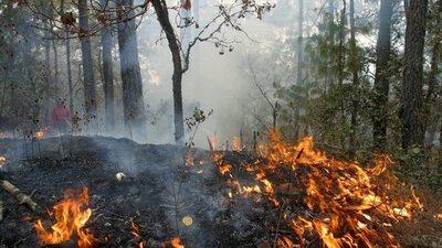 Continúan focos de incendios en zonas de San Bernardino e Ypacaraí