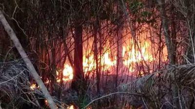 Controlan incendio en el Cerro Patiño