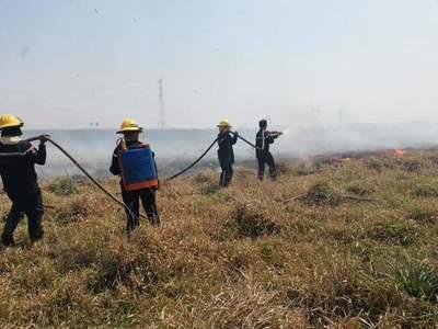 Incesante lucha de bomberos para controlar incendios en Misiones