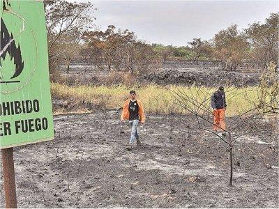 Cerca de 20 parques y reservas ya fueron afectados por  los incendios