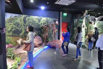 Familias paranaenses disfrutaron recorrido en la «Noche de los Museos»