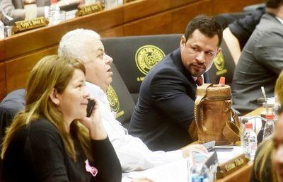 Diputados insisten en reglamentar expulsiones