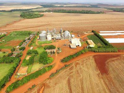 Lluvia trajo alivio y tranquilidad a los productores agrícolas del Alto Paraná