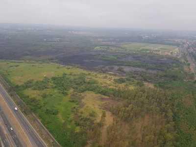 Instituciones planean reforestar Parque Guasu tras incendios