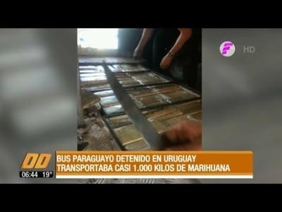 Detienen bus paraguayo con 1.000 kilos de marihuana en Uruguay
