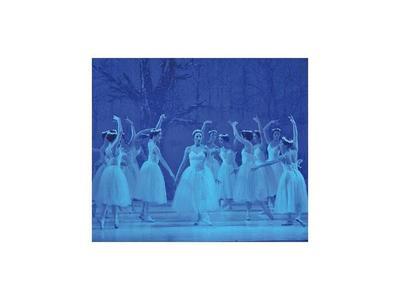Ballet Municipal presentará en conjunto con la OSN la inédita obra La Bayadera