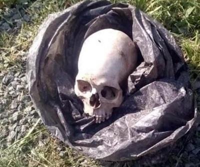 Hallan cráneo en Remansito