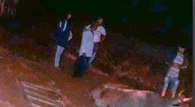 Niño muere en choque de auto contra carreta