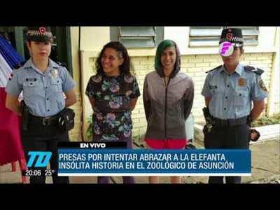 Insólito. Detenidas por ingresar a jaula de elefante