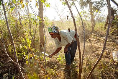 """Mujeres rurales son homenajeadas en su día como """"guardianas de la tierra"""""""