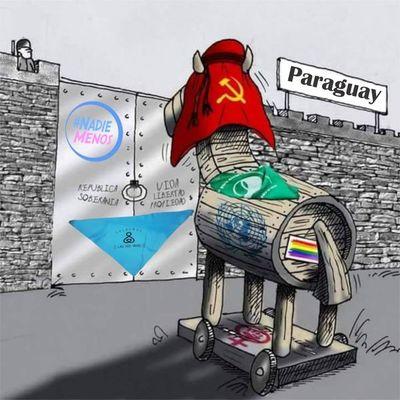 El caballo de Troya del feminismo