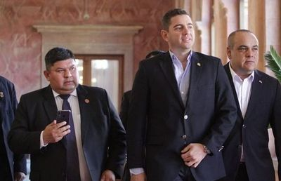 Pedro Alliana admite que diputados podrían perder  investidura