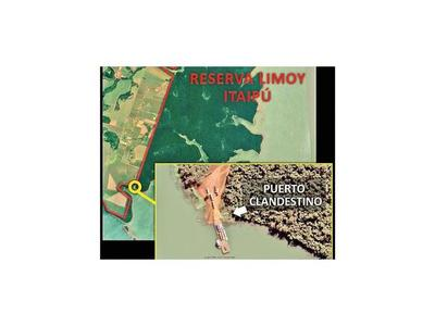 Puerto cedido por Itaipú en área protegida no paga ni se controla