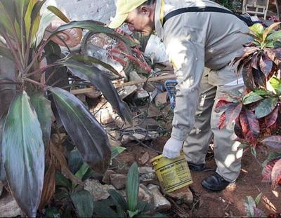 Paraguay en alerta ante aumento de casos de dengue en la región