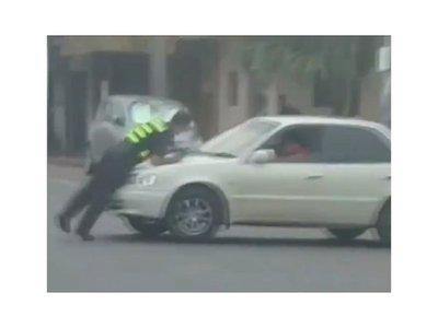 Conductor llevó por delante a un zorro en San Lorenzo