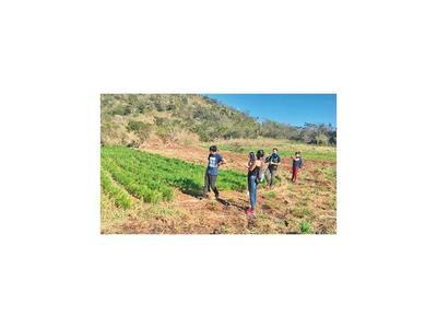 Proyecto de procesamiento de hierbas  gana concurso