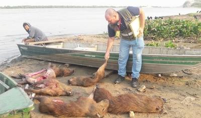 Concepción: Animales Silvestres y pescados fueron decomisados a orillas del Río Paraguay
