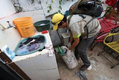 Instan a eliminar criaderos para evitar expansión del dengue