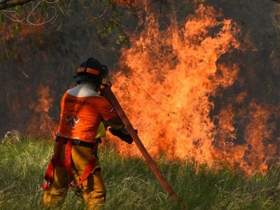 BNF ofrece créditos a afectados por incendios forestales