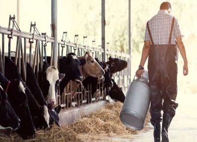 Resaltan la oportunidad que genera la lechería