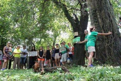 Manifestantes del Botánico son denunciados por el MOPC