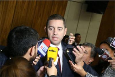 """Alliana se """"desmarca"""" del proyecto de reelección presidencial"""