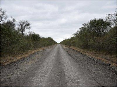 Reportan signos de recuperación en Pantanal paraguayo