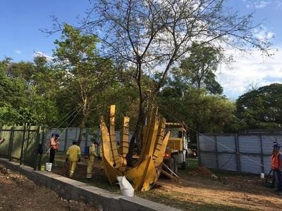 Arranca traslado de árboles en el Jardín Botánico