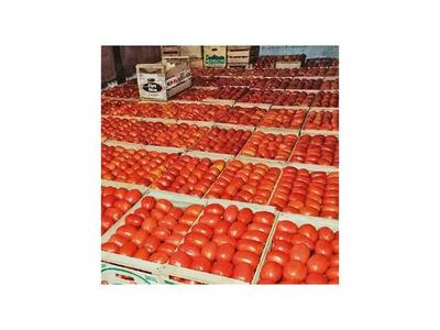 MAG hace ferias de tomate a G. 3.500 en varios espacios