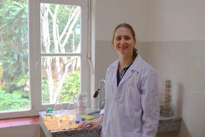 Identifican principales plagas y enfermedades del cocotero