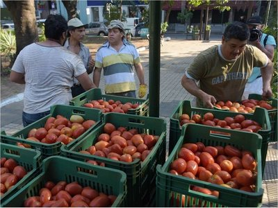 Se extiende la exitosa feria de tomates a G. 3.500 el kilo