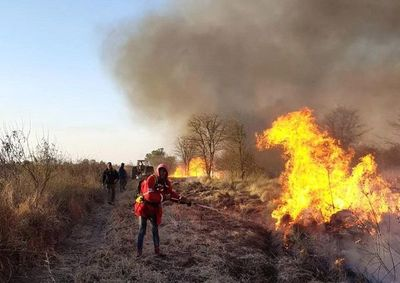 Prevención y actuación rápida, acciones esenciales para evitar producción y expansión de incendios forestales