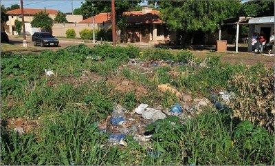 Te pueden multar por G. 25 millones si no mantenés limpio tu baldío o patio