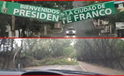 Cartel de Pdte. Franco roto y árboles caidos en túnel de Santa Rita