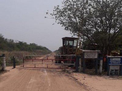 Animales sueltos exponen al peligro a transeúntes en Alto Paraguay