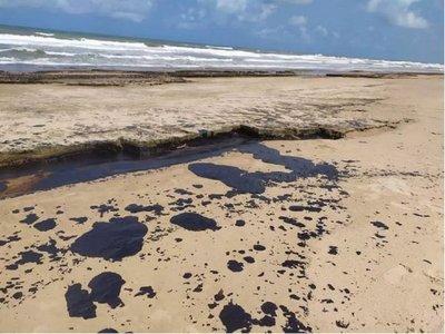 Hallan restos de petróleo en Abrolhos, cuna de ballenas en el Atlántico Sur
