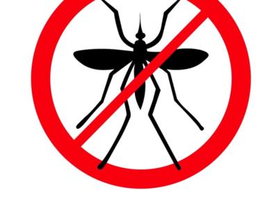 Virus del Mayaro podría circular este verano en el país