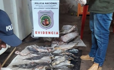 Con multas de hasta 5.000 jornales arranca hoy la veda pesquera