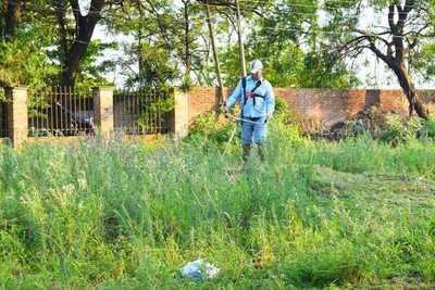 Villa Elisa: Multas de hasta seis millones por predios sucios