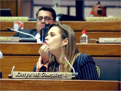 Diputada denuncia que quieren ocultar el presupuesto del Parlasur