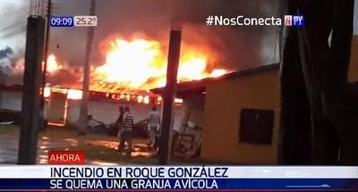 Fuego consume granja avícola en Roque González