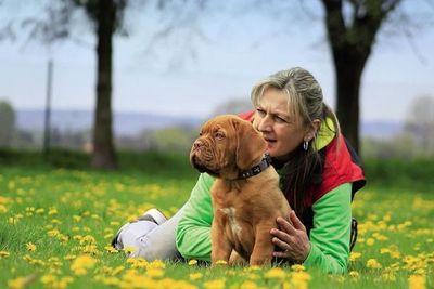Con la caninoterapia, el cariño de un perrito ayuda a salvar vidas