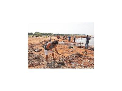 Limpian las zonas ribereñas
