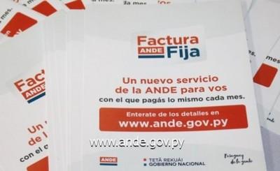 ANDE ofrece Factura Fija y flexibilidades para la Potencia Reservada