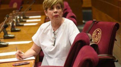 Duros cuestionamientos de Desirée Masi a licitación de urnas electrónicas