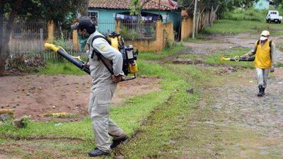 Salud otorga G. 7 mil millones para compra de insecticidas