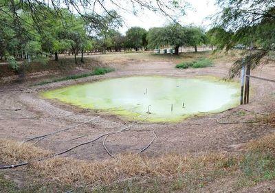 Chaco Central sigue en espera de precipitaciones